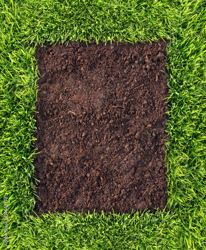 Grass and soil frame