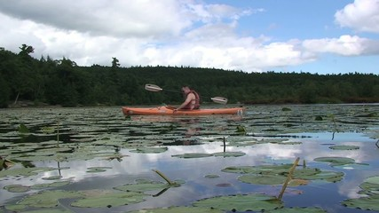 Young Male Kayaking in Lake with Lilly Pads