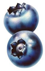 Zwei Blaubeeren