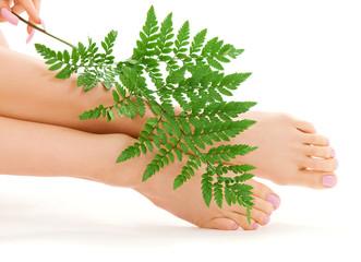female feet with green leaf