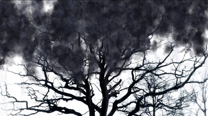 Tree of Terror - digital animation