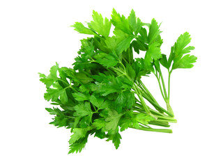Parsley on white background.Top view. Clouse-Up.Isolated