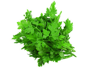 Parsley on white background.Isolated