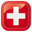 schweiz logo button