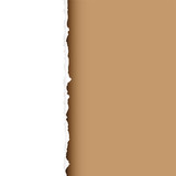 brown tear divide poster