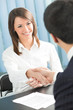 Businesspeople, or business person and client handshaking