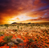 Fototapety Sunset Desert Beauty