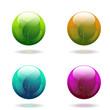 Nature globes