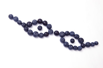 blueberries_glasses2