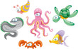Family of marine animals