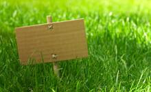 Zielony komunikat - zielony marketing w przyrodzie