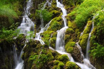 Wasserfälle im Moos