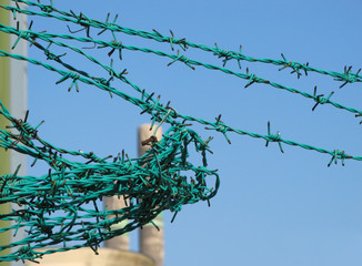 Barbed wire detail