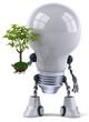 Ampoule et plante verte