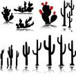 cactus vector silhouettes