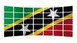 Monitor Saint Kitts e Nevis