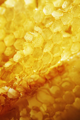Yellow honeycomb wax cell background