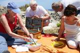 Hommes et femmes seniors pique-niquant en bord de mer