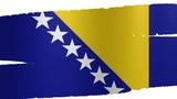 Pennello Bosnia-Erzegovina poster