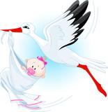 Stork delivering a newborn baby girl poster