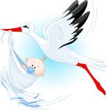 Stork delivering a newborn baby boy poster
