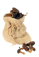 Dried mushrooms in a sack on a white background