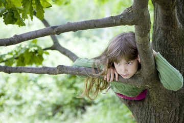 little cute girl  hanging from branch of tree. Summer time