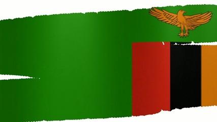 Pennello Zambia