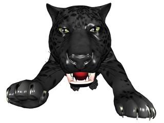 Attacking black panther