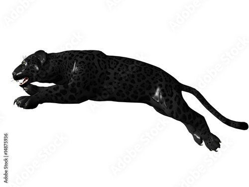 Jumping black panther