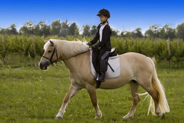 Bambina cavalca cavallo a scuola