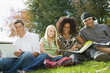 Four students studying outdoors, portrait