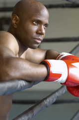Boxer resting on boxing ring, head and shoulders