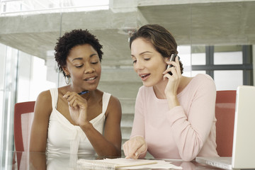 Two Businesswomen in Meeting