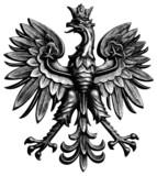 Poland eagle - 14901122