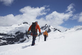 Hikers joined by safety line in snowy mountains, back view