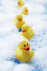 Row of rubber ducks in bubble bath, elevated view, close-up
