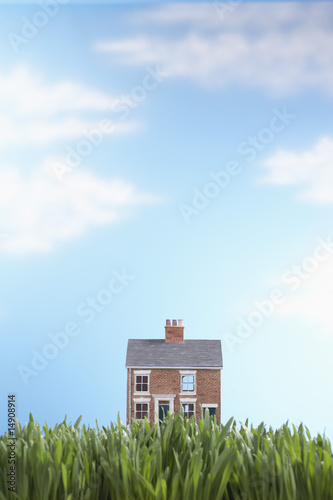 Model house in grass