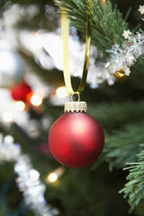 Red bauble hanging from christmas tree, close up