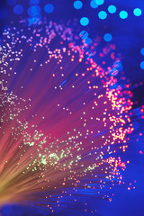 Fiber Optic Light Wand, close up