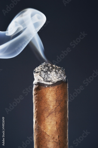 End of smoking cigar in studio, black background