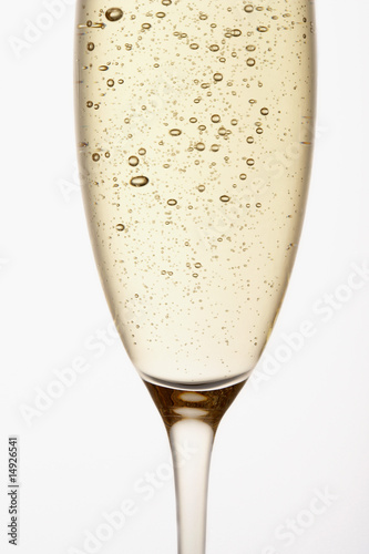 Glass of Champagne, close up, in studio