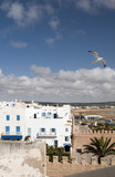 rooftop view beach and buildings essaouira morocco poster