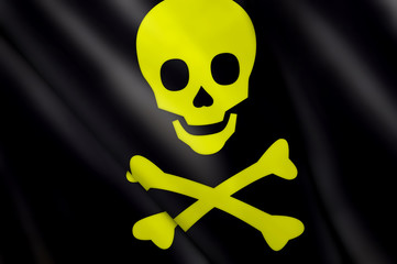 Flag of pirate skull