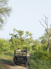 Group of people in jeep on safari, back view