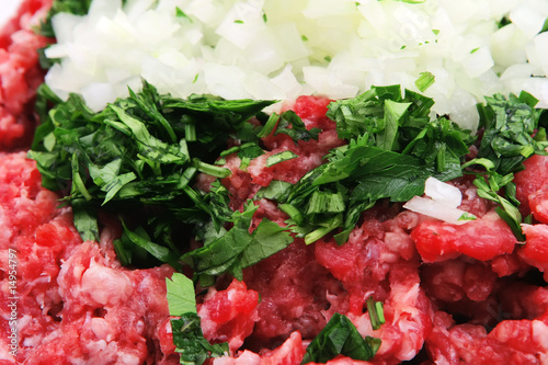 minced beef and onion