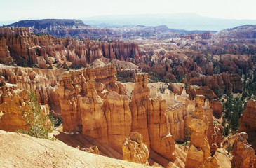 USA, Utah, Bryce Canyon National Park, hoodoo formations