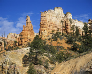 USA, Utah, Bryce Canyon