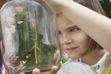 Girl 7-9 examining stick insects in jar, close-up