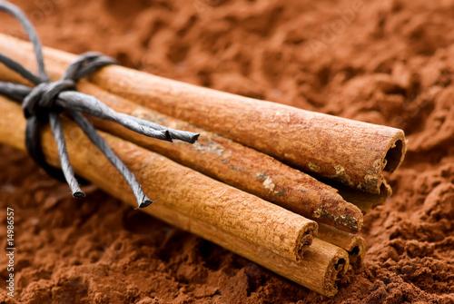 Zimtstangen mit Kakao